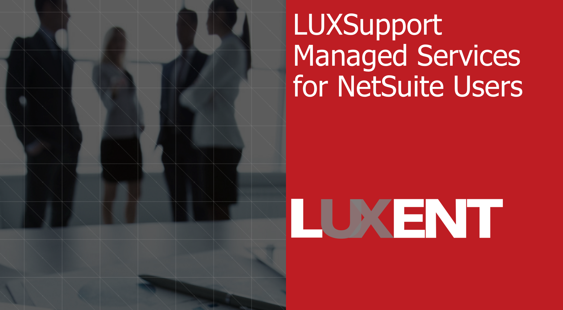luxsupport managed services for netsuite
